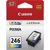 Canon CL-246 CL246 Color Ink Cartridge
