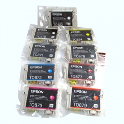 Epson 87 Ink Cartridges for Epson Stylus Photo R1900 Printers